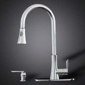 Chrome Kitchen Sink Faucet Pull Out Spray Single Handle w