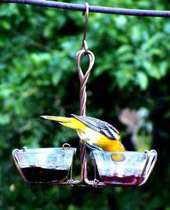 Copper Double Jelly Meal Worm Oriole Bird Feeder