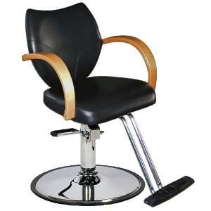 Salon Hydraulic Styling Chair   Heavy Duty Pump Base Beauty