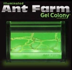 Illuminated Ant Farm Gel Colony Uncle Milton Habitat 0042499014519